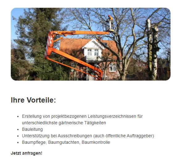 Baumpflegerische Betreuung im Raum  Ostereistedt